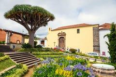 Il centro storico della città di La Orotava con l'albero di drago, isola di Tenerife, Spagna Immagini Stock Libere da Diritti