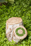 Il ceppo di albero sull'erba con ricicla il simbolo Fotografie Stock Libere da Diritti