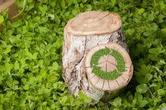 Il ceppo di albero sull'erba con ricicla il simbolo Fotografia Stock Libera da Diritti