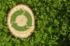Il ceppo di albero sull'erba con ricicla il simbolo, cima Immagine Stock Libera da Diritti