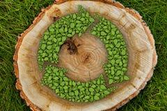 Il ceppo di albero sull'erba con ricicla il simbolo, cima Fotografia Stock