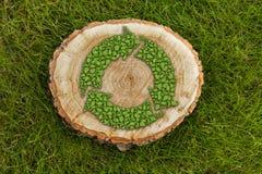 Il ceppo di albero sull'erba con ricicla il simbolo, cima Fotografie Stock