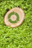 Il ceppo di albero sull'erba con ricicla il simbolo, cima Fotografia Stock Libera da Diritti