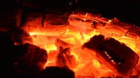 Il ceppo sta bruciando dentro un camino video d archivio