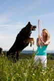 Il cerchio biondo di hula della holding della donna, cane salta attraverso Fotografia Stock Libera da Diritti
