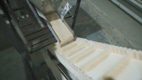 Il cereale della farina d'avena è imballato in borse alla fabbrica stock footage