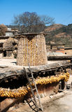 Il cereale giallo si è riunito nel silo di legno sul tetto della casa del villaggio Fotografia Stock Libera da Diritti