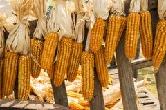 Il cereale secco ha appeso sullo stile tailandese del carretto di legno, Tailandia Immagine Stock Libera da Diritti