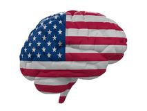 Il cervello umano è bandiera colorata di U.S.A. Fotografia Stock Libera da Diritti