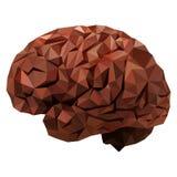 Il cervello umano royalty illustrazione gratis
