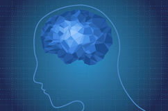 Il cervello umano Immagine Stock Libera da Diritti
