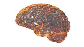 Il cervello umano 3D rende Immagini Stock Libere da Diritti