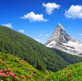 Il Cervino è una montagna nelle alpi della pennina Fotografia Stock