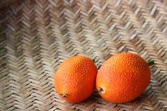Il cetriolo amaro della molla fresca Fotografia Stock Libera da Diritti