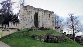 Il Château de Langeais è un castello medievale Loire Valley france immagini stock
