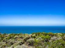 Il Chaparral, ocen e cielo blu Immagini Stock Libere da Diritti