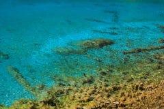 Il chiaro lago blu Immagini Stock