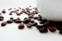 Il chicco di caffè arrostito si è sparso sulla terra della parte posteriore di bianco Fotografia Stock Libera da Diritti