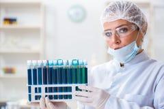 Il chimico della donna che lavora nel laboratorio della clinica dell'ospedale Immagini Stock Libere da Diritti
