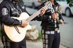 Il chitarrista gioca la chitarra Fotografia Stock Libera da Diritti