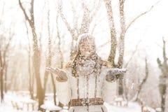 Il chute de neige du ` s Photo libre de droits