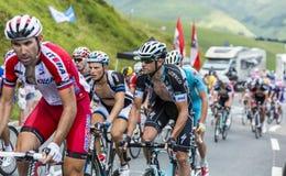 Il ciclista Alessandro Petacchi - Tour de France 2014 Fotografia Stock Libera da Diritti