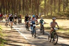Il ciclista fa concorrenza nella corsa dell'elite MTB alla foresta Fotografia Stock Libera da Diritti