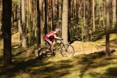 Il ciclista fa concorrenza nella corsa dell'elite MTB alla foresta Immagini Stock Libere da Diritti