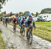 Il ciclista Mathew Hayman su una strada Cobbled - Tour de France 201 Fotografia Stock