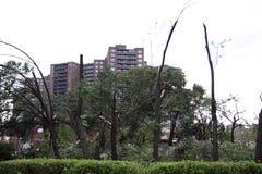 Il ciclone colpisce New York City il 16 settembre 2010 immagine stock