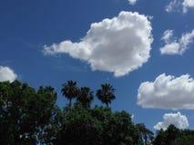Il cielo fotografia stock