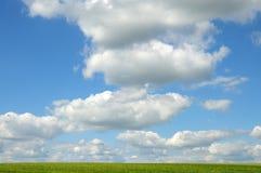 Il cielo blu con bianco si rannuvola il campo verde Fotografia Stock Libera da Diritti