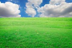Il cielo blu con le nuvole e su erba Fotografie Stock Libere da Diritti