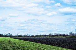 Il cielo con si rannuvola i campi verdi e neri Fotografie Stock Libere da Diritti