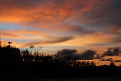 Il cielo dorato Fotografie Stock