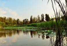 Il cielo ed il lago Fotografie Stock