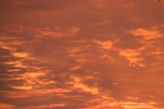 Il cielo ha girato dorato immagini stock libere da diritti