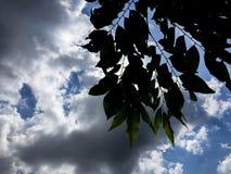 Il cielo nell'ambito dello strom Fotografia Stock
