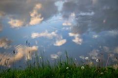 Il cielo nuvoloso ha riflesso in acqua con i denti di leone, in primavera fotografia stock