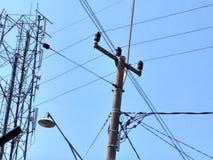 Il cielo in pieno dei cavi Fotografia Stock Libera da Diritti