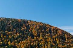 Il cielo si è diviso da una collina della foresta mista nei colori di autunno Fotografie Stock