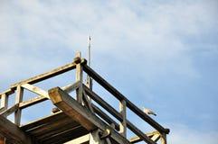 Il cielo vecchio insolito di costruzione degli alberi del parco alloggia la casa Immagine Stock