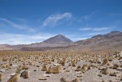 Il Cile Fotografia Stock Libera da Diritti