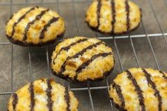 Il cioccolato appena fatto ha immerso i macarons Fotografia Stock