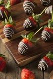 Il cioccolato casalingo ha immerso le fragole Fotografia Stock