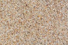 Il ciottolo arrotondato della sabbia lapida il fondo Fotografia Stock
