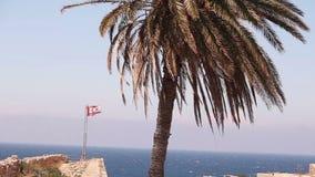 Il Cipro del Nord, la bandiera della Repubblica del Cipro del Nord contro il cielo blu ed il mare stock footage