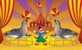 Il circo con il pagliaccio e le guarnizioni Immagine Stock