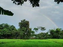 Il clic dell'arcobaleno Fotografie Stock