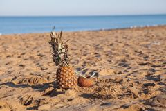 Il cocktail della noce di cocco e dell'ananas sulla spiaggia vicino al mare ricorre Fotografia Stock Libera da Diritti